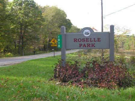 roselle park in ada mi