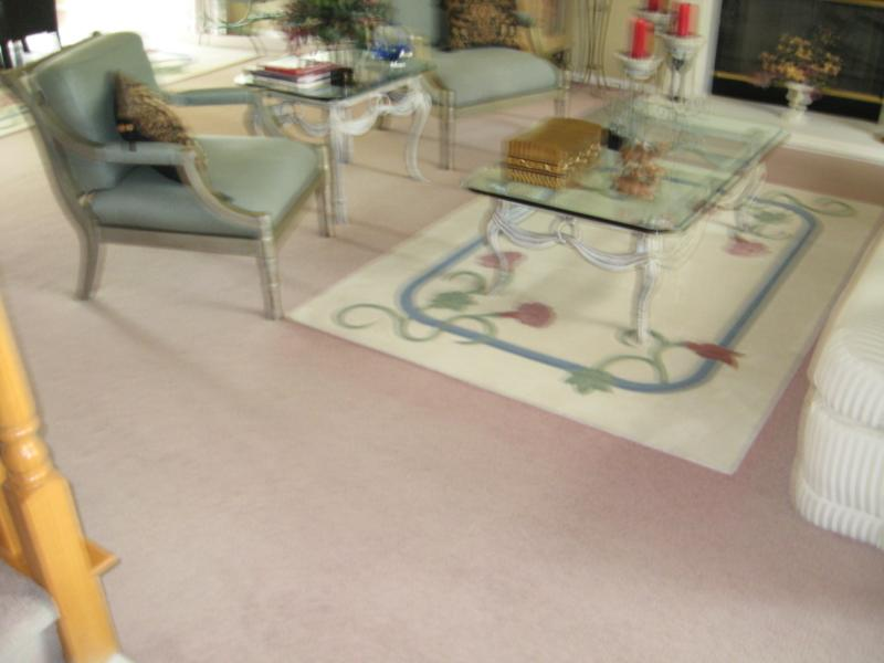 Dieing to save a few bucks by dyeing your carpets?