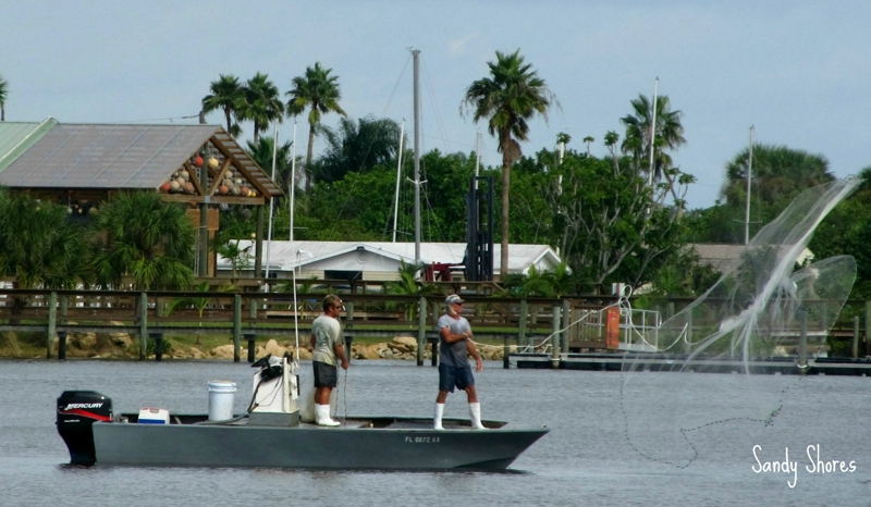 Just a Day of Fishing on the Indian River Lagoon