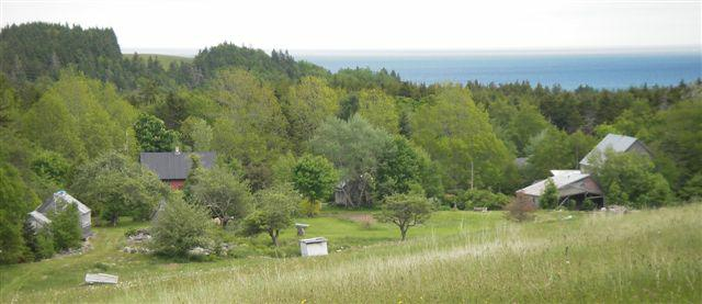 oceanview Nova Scotia farm and cottage