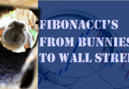 Cover Picture for Fibonacci Training Video