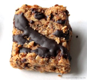 No-Bake-Peanut-Butter-Oatmeal-Crunch-Bars-7