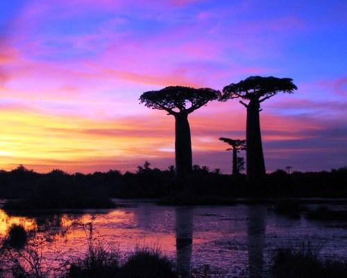 Wyjazdy Madagaskar