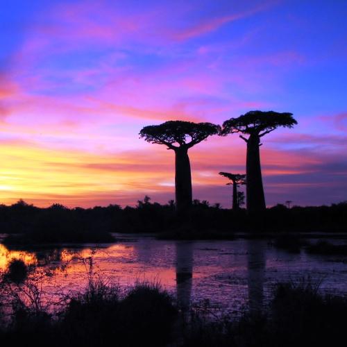 Motywacja na Madagaskarze