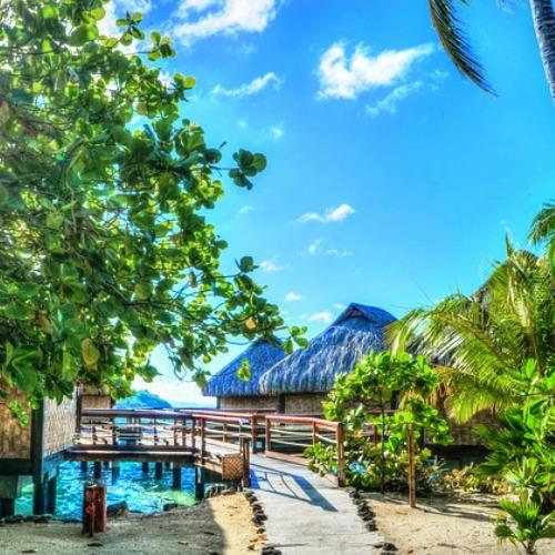 Wyjazdy do Polinezji