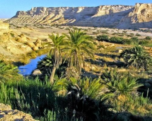 Wyjazdy do Omanu