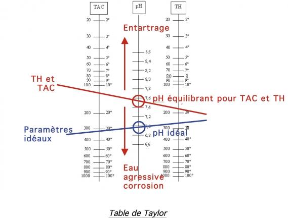 balance de taylor activite piscine