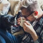 【ヒルナンデス! 】主婦の副業で稼ぐ 公募に応募して稼ぐ『公募ガイド』の情報・登録方法