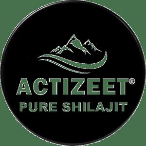 Shilajit Blog
