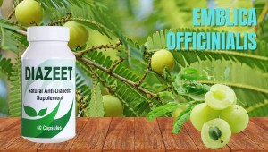 Emblica Officinalis for diabetes