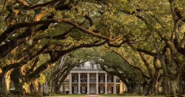 plantationneworleans.jpg