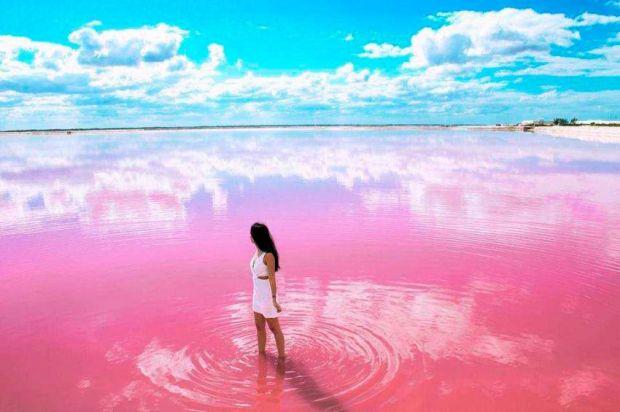 pink sea cartegena