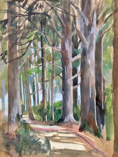 Forêts de cèdres 1920 72 dpi