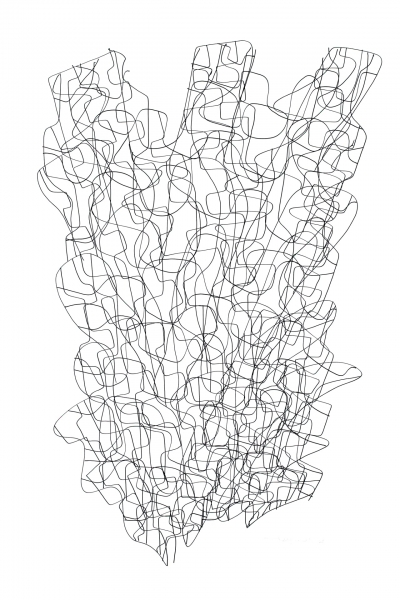 07 Shells 3 100x70cm Dessin à l'encre sur papier 2008 1920 72 dpi