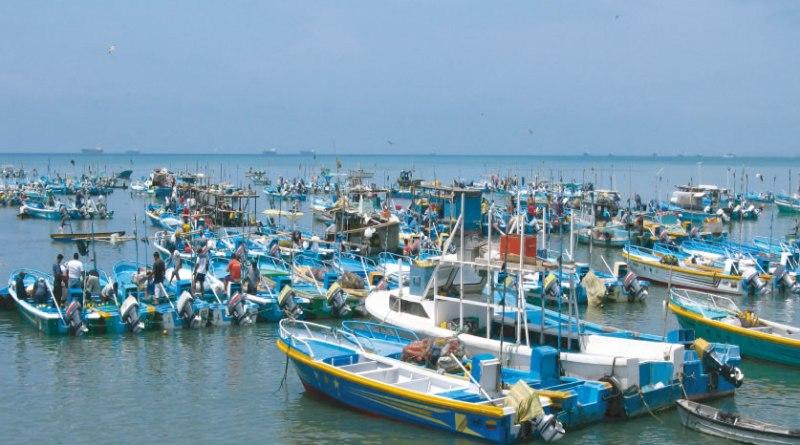 El 85% de las capturas de pescados y mariscos en América Latina provienen de la pesca artesanal