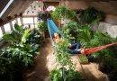 El Invernadero del Futuro: tu propia comida para todo el año. Guía práctica de construcción