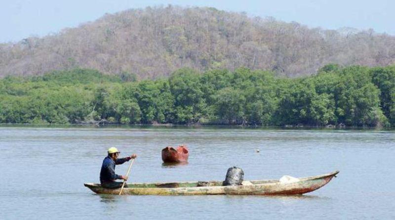 Pescadores artesanales se unen para limpiar el manglar y decir No a su tala