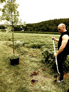 Vin Diesel posts tree planting on his Facebook page.