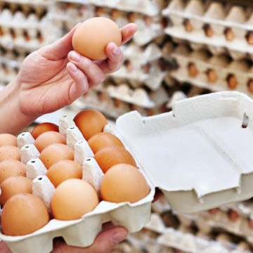 Bolivia incentiva el consumo de huevo