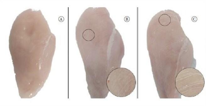 Franjas blancas: a) Pechuga normal; b) Pechuga con franjas blancas moderadas; c) Pechuga con franjas blancas severa. Fuente: Petracci et al., 2019.
