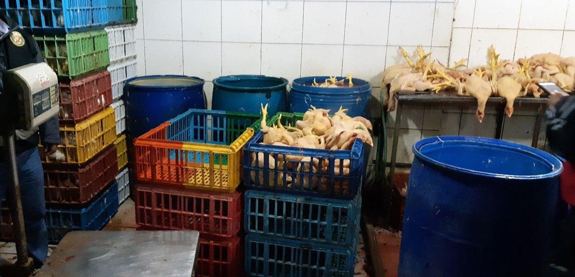 Senasa realizó operativo en centros de faenamiento de aves en Cusco