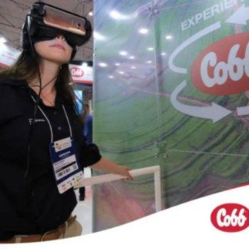 Cobb sorprende con plataforma 3D de granjas de progenitoras