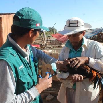 Avicultores beneficiados en Arequipa