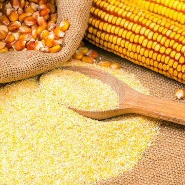 Argentina: cosecha de maíz rompió récord histórico