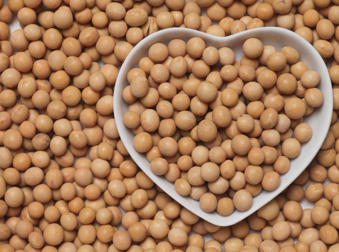 Paraguay: país se sitúa como quinto productor de soya del mundo