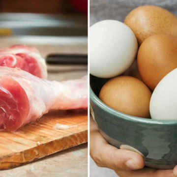 Producción de pollo y huevo creció en Nicaragua