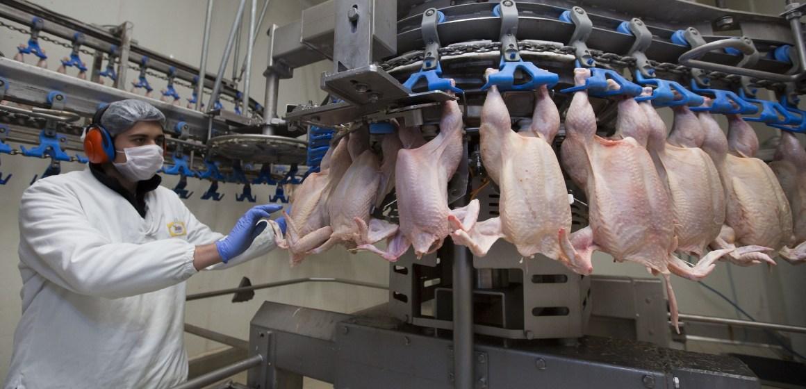 Recomendaciones de la Asociación Latinoamericana de Avicultura para el manejo de Covid-19