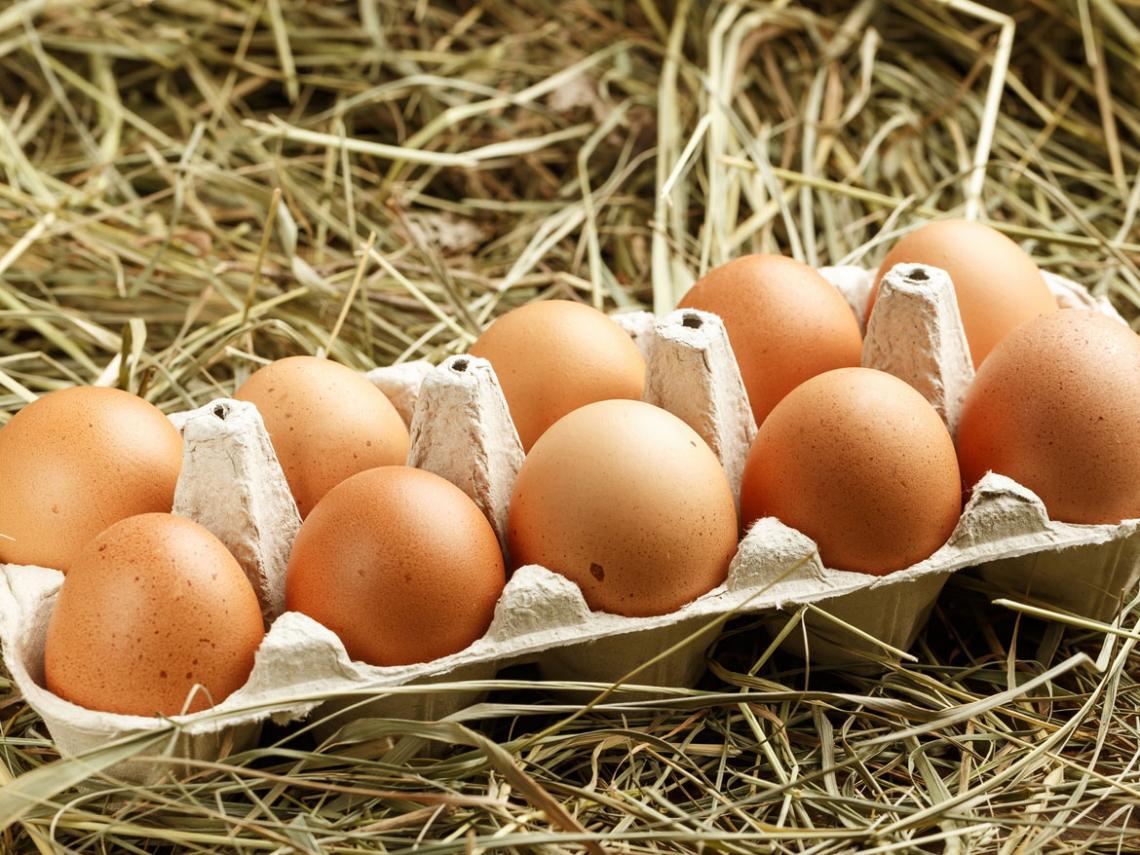 huevos_1