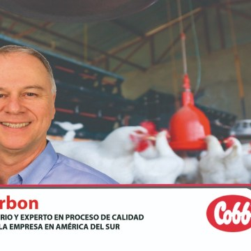 Cobb: Importancia del retiro del alimento pre-faena para pollos de engorde