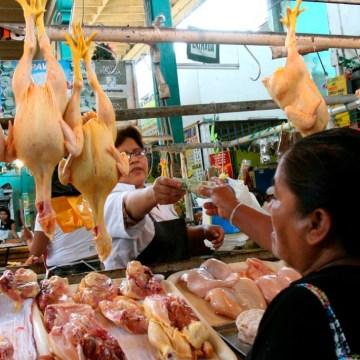 Alza en el precio del pollo por demanda internacional del maíz