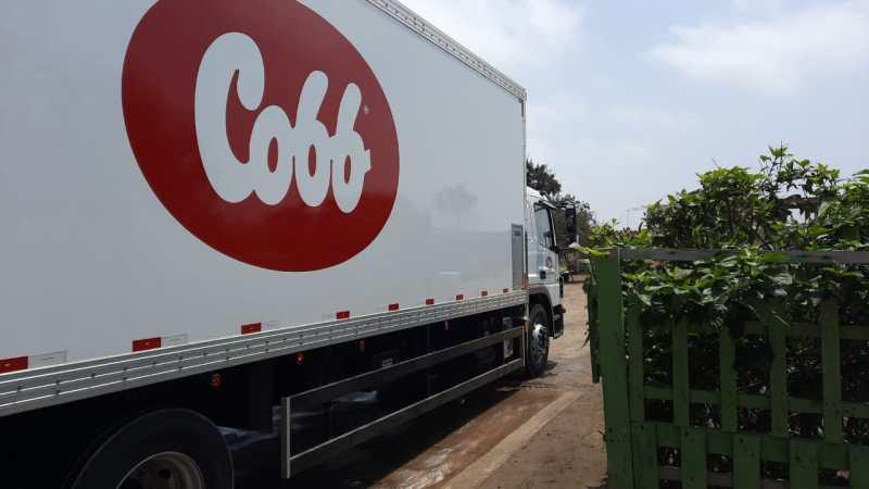 Cobb Perú