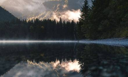 Réflexions tôt le matin par  Daniel Koehalmi …