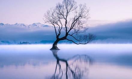 Brouillard matinal sur le lac de Wanaka
