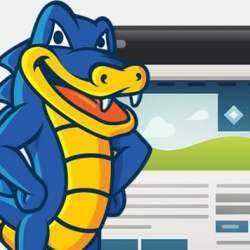 HostGator Discount Coupon - special discount coupon