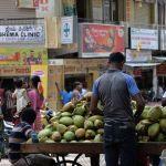 Cocos-en-India