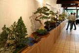 selection régionale EST 2012 - exposition 3