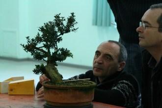 atelier ascap 2012 - 14