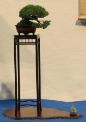 noelanders trophy 2013 - 07