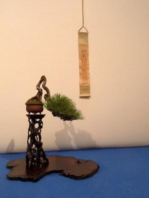 noelanders trophy 2013 - 42