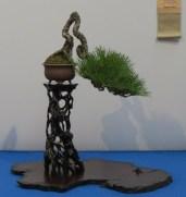 noelanders trophy 2013 - 59
