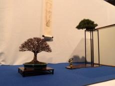 noelanders trophy 2013 - 73