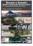 bonsai e suiseki 2013 lugano