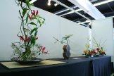 ikebana lorraine - roseau noir - 21