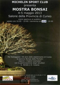 mostra bonsai michelin sport club