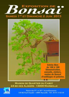 exposition bonsai marseille