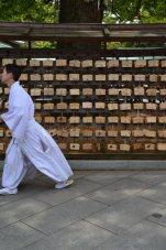 visite au sanctuaire meiji tokyo - 08